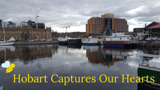 Hobart Captures Our Hearts