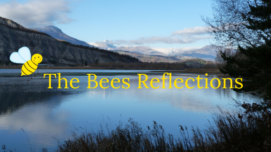 The Bees Reflections
