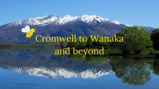 Cromwell to Wanaka and beyond