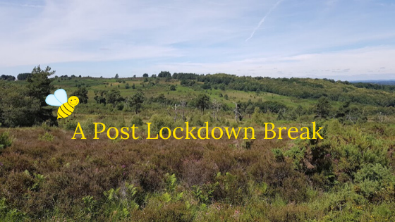 A Post Lockdown Break